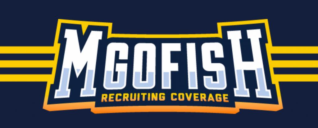 MGoFish banner logo